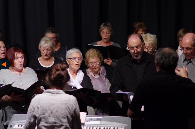 IMGP6657 - Extrait de Concert Nouvelles du Front le 18 novembre 2014