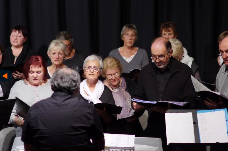 IMGP6748 - Extrait de Concert Nouvelles du Front le 18 novembre 2014